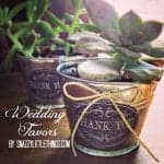 DIY: Vintage Succulent Wedding Favors