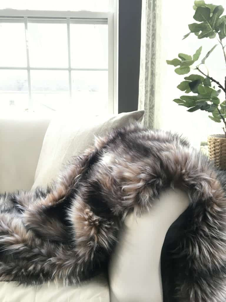 Fur Blanket in Sunroom